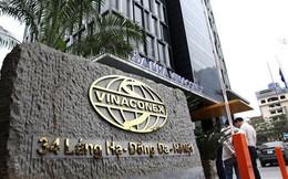 Tích cực thoái vốn, Vinaconex báo lãi đột biến 1.000 tỷ đồng trong quý IV