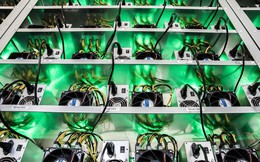 Bitcoin trở thành thiên đường thuế mới, các nước lúng túng tìm cách quản lý