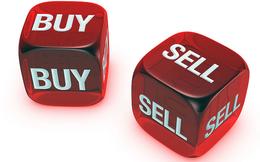 NTL, TDG, TIX, BMI, VGP, HVA, GKM, DNY: Thông tin giao dịch lượng lớn cổ phiếu
