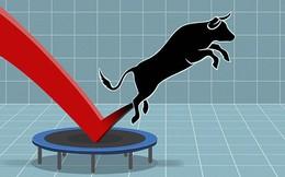 Khối ngoại mua ròng, Vn-Index tiếp đà tăng hơn 6 điểm