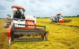 Xuất khẩu nông lâm thủy sản năm 2018 sẽ đạt 40 tỷ USD