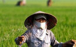 """Giá phân bón ở Việt Nam rất cao vì phải """"gánh"""" nhiều tầng đại lý"""