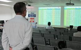 Chứng khoán HSC đạt lãi ròng 603 tỷ sau 9 tháng, giá trị tự doanh giảm hơn một nửa