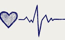 Đây là những dấu hiệu cảnh báo tình trạng hạ huyết áp đột ngột mà bạn không nên chủ quan bỏ qua