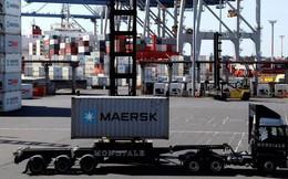 Thuế các nước sẽ giảm thế nào khi TPP-11 có hiệu lực từ giữa tháng 1/2019?