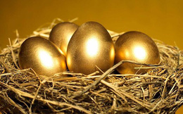 Quý 3 thị trường hồi phục, các công ty chứng khoán lớn đầu tư cổ phiếu như thế nào?