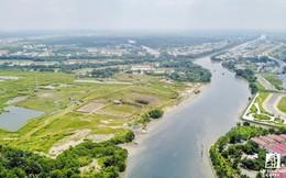 TP.HCM chuyển cơ quan điều tra 3 sai phạm tại công ty Tân Thuận