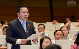 """Đại biểu Lưu Bình Nhưỡng: Lo hình thành nhiều Vũ """"nhôm"""" trong quá trình cổ phần hoá"""