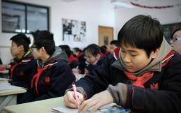 Lĩnh vực tiềm năng này ở Trung Quốc hoàn toàn không bị ảnh hưởng bởi Chiến tranh Thương mại