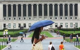 10 trường đại học tốt nhất thế giới