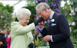 Người hâm mộ dậy sóng trước tin Nữ hoàng Anh ngầm chuyển giao quyền lực cho Charles, bà Camilla sẽ lên ngôi hoàng hậu