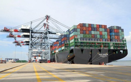 Với quy mô hơn 1.200 ha, Cái Mép hạ sẽ trở thành trung tâm logistics lớn nhất Việt Nam sau khi được xây dựng