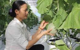 Hà Tĩnh: Cô gái 9x xinh đẹp nhận giải Lương Định Của nhờ 4000m2 nhà màng trồng dưa thu tiền tỷ