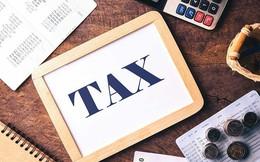 Chính phủ yêu cầu chính sách thuế mới phải được đánh giá kỹ