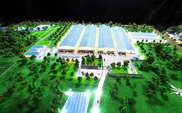 Coteccons trúng thầu dự án nhà máy trị giá gần 1.500 tỷ đồng