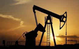 Giá dầu thô sắp chạm mức 75 USD/thùng