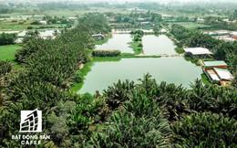 TP.HCM: Phê duyệt hệ số điều chỉnh giá đất trong dự án sửa chữa, nâng cấp Tỉnh lộ 9, huyện Hóc Môn