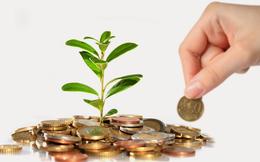 KDH, CTB, CNH, GKM, DTD, PTE: Thông tin giao dịch lượng lớn cổ phiếu