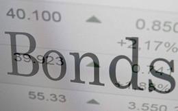 Đẩy mạnh mảng tư vấn phát hành trái phiếu, Techcom Securities (TCBS) báo lãi hơn 700 tỷ sau 9 tháng