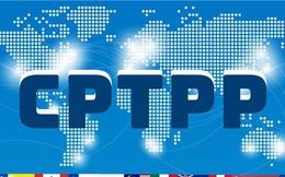 [Infographic] CPTPP có hiệu lực tác động thế nào đến kinh tế Việt Nam?