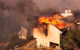 Cháy rừng nuốt chửng một thị trấn, hàng chục người thiệt mạng