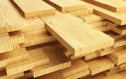 Xuất khẩu gỗ và sản phẩm gỗ có thể đạt hơn 8 tỷ USD trong năm nay
