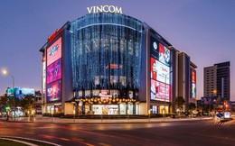 """Gần 30.000 m2 """"đất vàng"""" trung tâm thành phố Cẩm Phả, Quảng Ninh về tay hai đại gia bất động sản"""