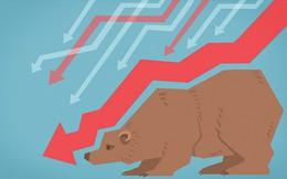 """Morgan Stanley: """"Chúng ta đã rơi vào phạm vi của thị trường con gấu"""""""