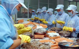 Canada là thị trường tiềm năng cho tôm Việt Nam