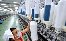 FTM giảm mạnh, Trưởng BKS Fortex vẫn muốn bán sạch gần 4 triệu cổ phiếu