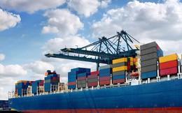 """Ách tắc container thủy sản tại cảng: Doanh nghiệp """"ngồi trên lửa"""" chờ Bộ NNPTNT"""