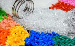 Cadivi Đồng Nai muốn bán sạch hơn 51% vốn tại Nhựa Hà Nội sau gần 1 năm làm cổ đông lớn