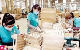 Hiệp định VPA/FLEGT: Đột phá xuất khẩu gỗ vào EU?