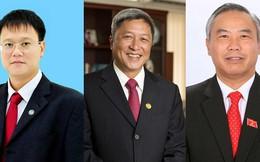 Thủ tướng Chính phủ bổ nhiệm 3 Thứ trưởng