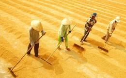 """Xuất khẩu gạo Việt Nam """"thẳng tiến"""" tới mốc 6,15 triệu tấn"""
