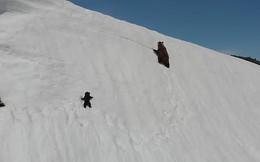 Video chú gấu con kiên nhẫn leo lên đỉnh núi tuyết truyền cảm hứng cho hàng triệu người với thông điệp: Đừng bao giờ bỏ cuộc!