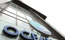 HĐQT Ocean Group bác bỏ đề nghị họp HĐQT bất thường từ hai thành viên