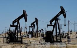 Trung Quốc có thể sẽ không nhập dầu thô của Mỹ trong năm 2019