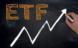 Tuần hai quỹ ETF cơ cấu: Khối ngoại mua ròng 187 tỷ đồng, đột biến giao dịch thỏa thuận