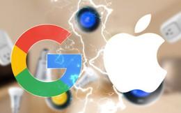 Vì sao Google chọn cách đi ngược chiều với Apple?