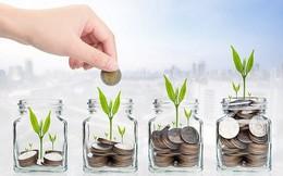 VN-Index được dự báo trong khoảng 900 – 1.000 điểm năm 2019, nhà đầu tư cân nhắc phân bổ danh mục vào trái phiếu, tiền gửi