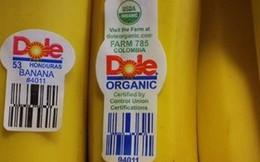Rất sai lầm khi bỏ qua chữ số dán trên trái cây nhập khẩu