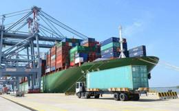 Ô tô chạy quá tốc độ ở cảng biển bị phạt đến 8 triệu đồng từ hôm nay