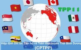 Những điều ít được biết đến về CPTPP