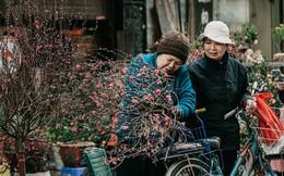 Chùm ảnh: Ghé thăm chợ hoa truyền thống lâu đời nhất Hà Nội - cả năm chỉ họp đúng một phiên duy nhất