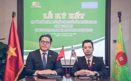 Quỹ đầu tư Hàn Quốc mua cổ phần của An Phat Holdings