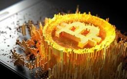 Lang thang với Bitcoin, mong chờ được lộ sáng