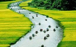 Việt Nam trong con mắt du khách quốc tế
