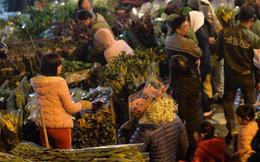 [ẢNH] Tấp nập chợ hoa Quảng An đêm trước Giao thừa