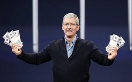 """Apple có 160 tỷ USD cần phải """"đốt"""", Tim Cook sẽ tiêu như thế nào?"""